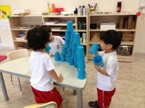 torre copos