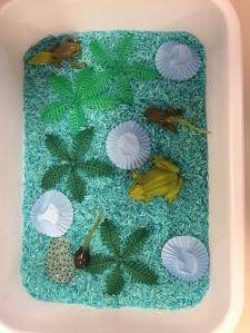 sensorial frog tray