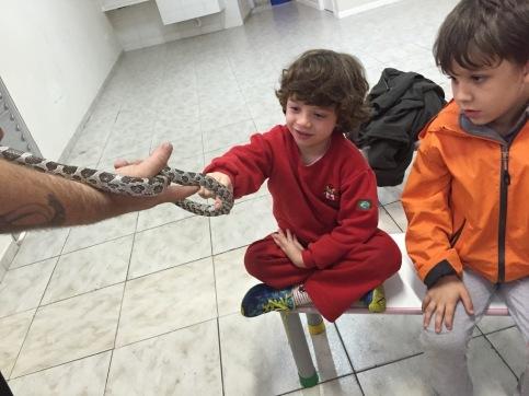 vet joao snake